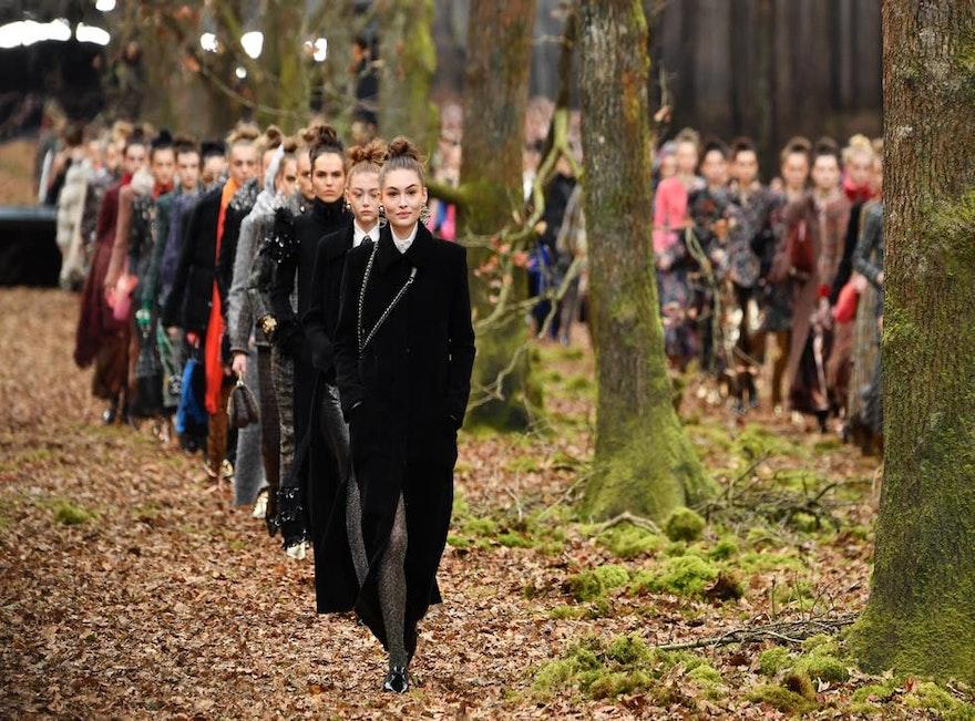 Moda y Bosques: como la moda impacta en la biodiversidad del planeta