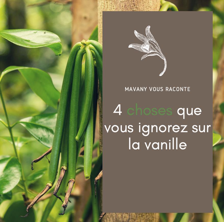 4 choses que vous ignorez (probablement) sur la vanille