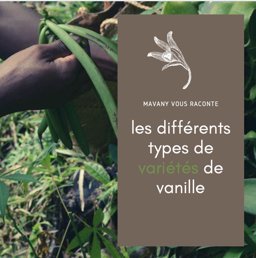 Quelles variétés de vanille choisir ?