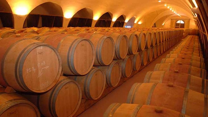 COVID-19 : Un effet grisant chez les vignerons