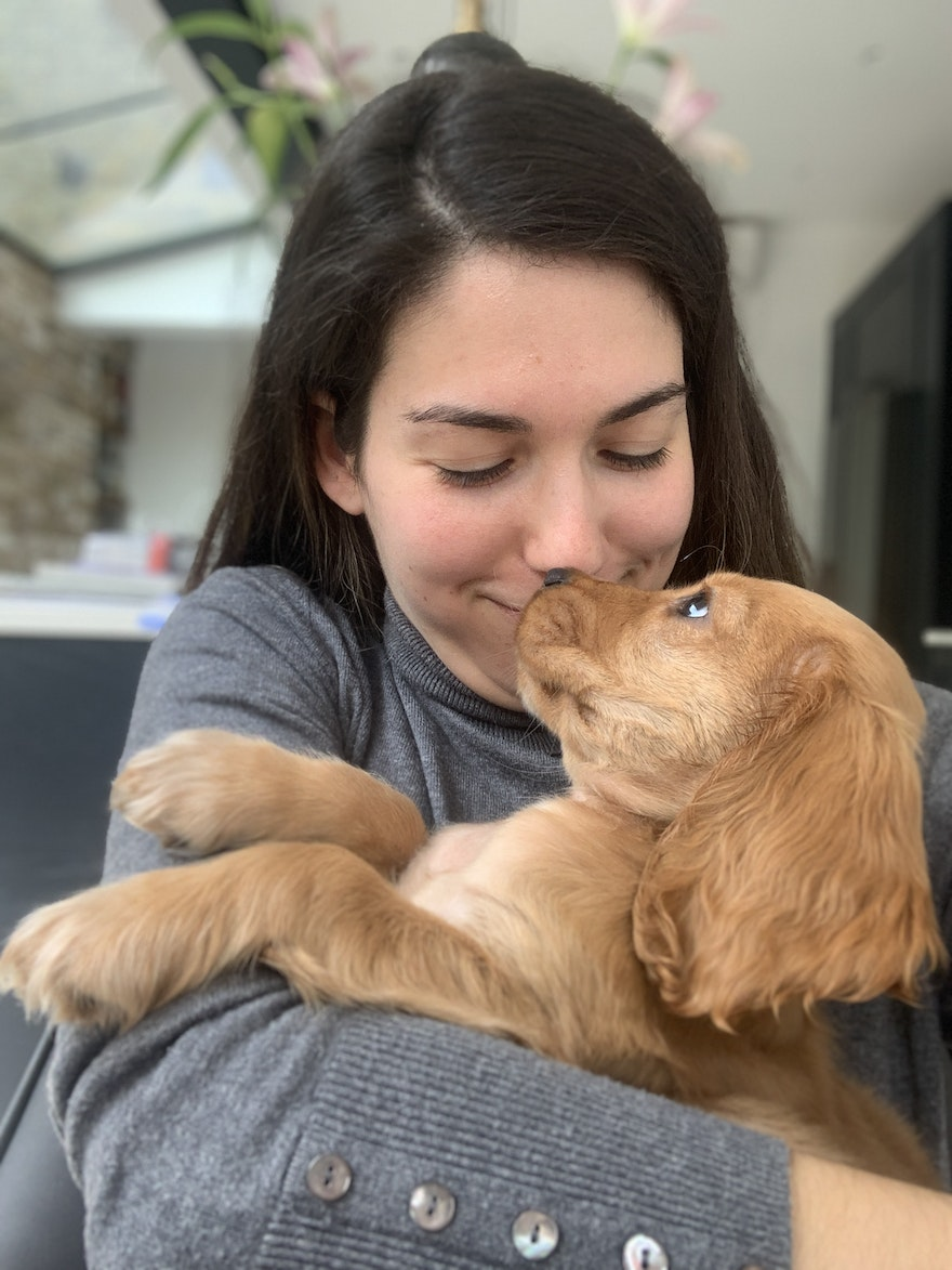How my pet-sitting side hustle netted me £500 in just one month