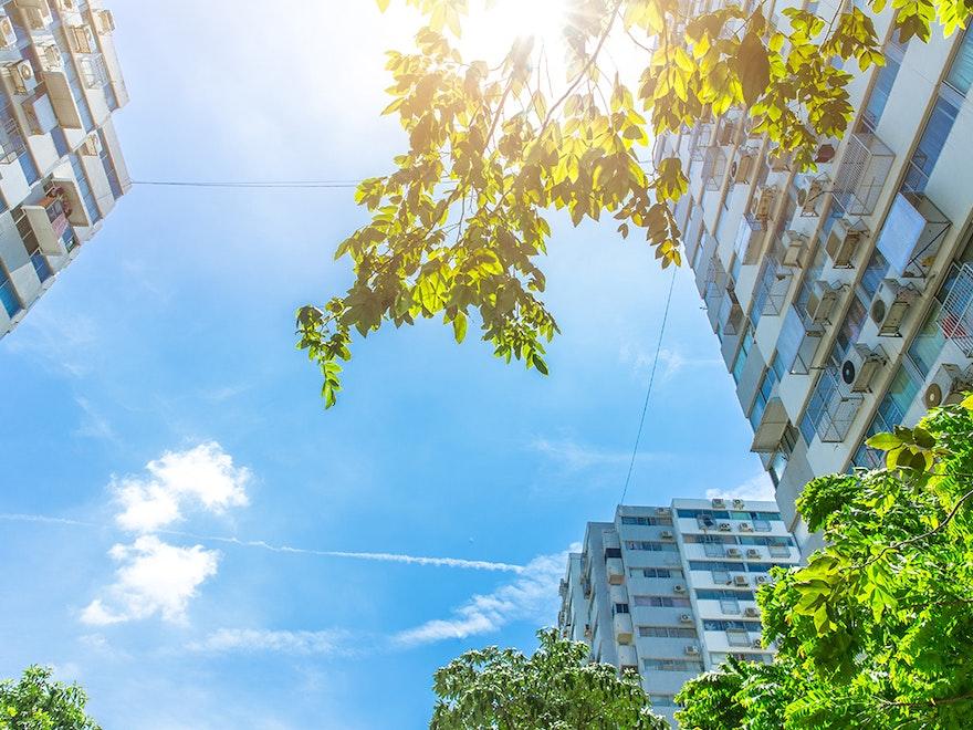 La valeur verte de l'immobilier