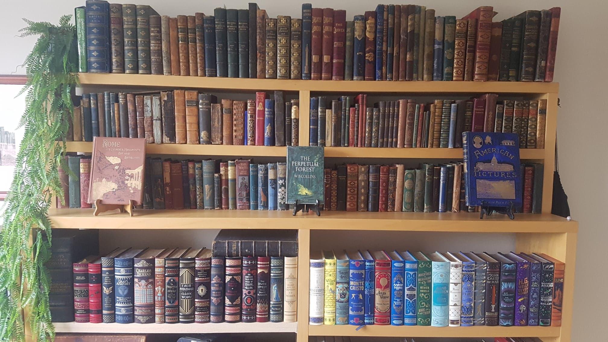 My Bookshelf Today