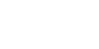 The Talent The Future The Hague Drieslag The Hague Careers transp.png