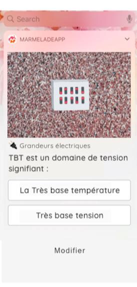 question-elec-pro-marmelade-app.fr.png