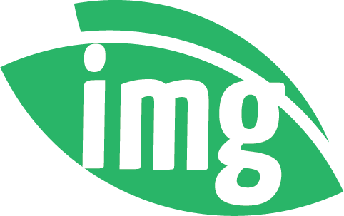 imgvision-img-icon.png
