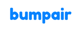 Bumpair Lavender Logo Bumpair without background.png